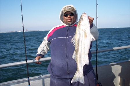BluefishGallery/Stripers112209001.JPG