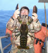 bigseabassphotogallery/LobsterCarlWeems1213001.JPG