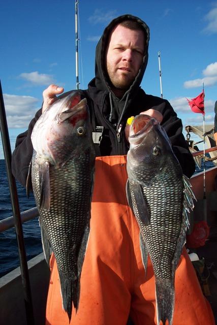bigseabassphotogallery/Sea_Bass_ErikScullyFranklinPKNJ11281023.JPG